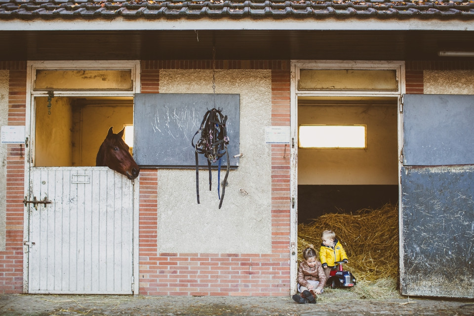 séance photo famille 94 Domaine de Grosbois chevaux
