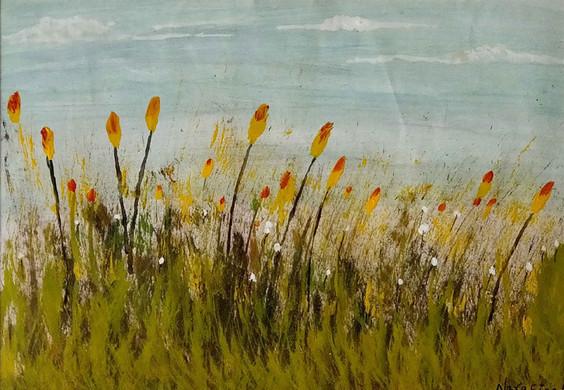 Prairie by Nara