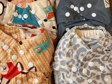 Which Cloth Pocket Diaper is Best: Alvababy or Nora's Nursery?