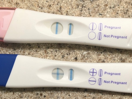 Pregnancy: The First Trimester
