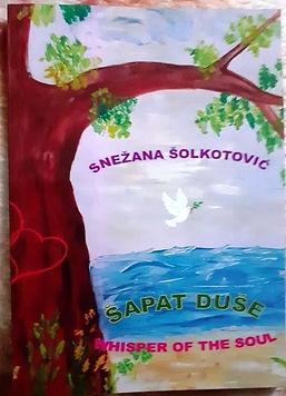 Snezana Solkotovic_Book Publication.jpg