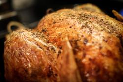 turkey-20