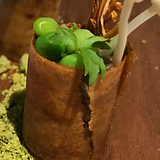 Gaggan Progressive Indian Cuisine, a Roller Coaster of tastes, texture and aroma in Bangkok! Gaggan is number one in Asia and we totally agree.