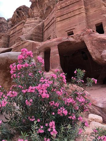 Petra Image 2.jpg