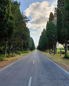 Cypress Avenue leading to the Village of