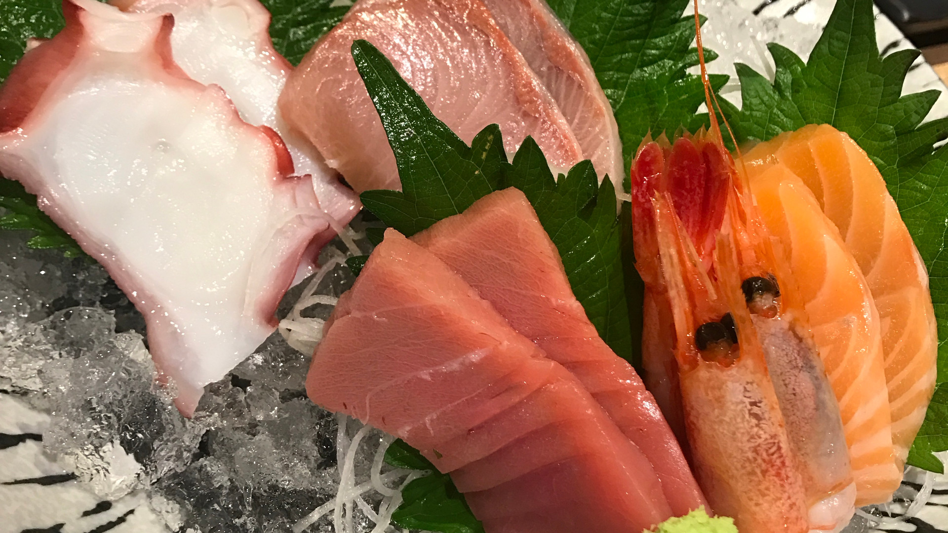 Sashimi of Shinsen Fish Market
