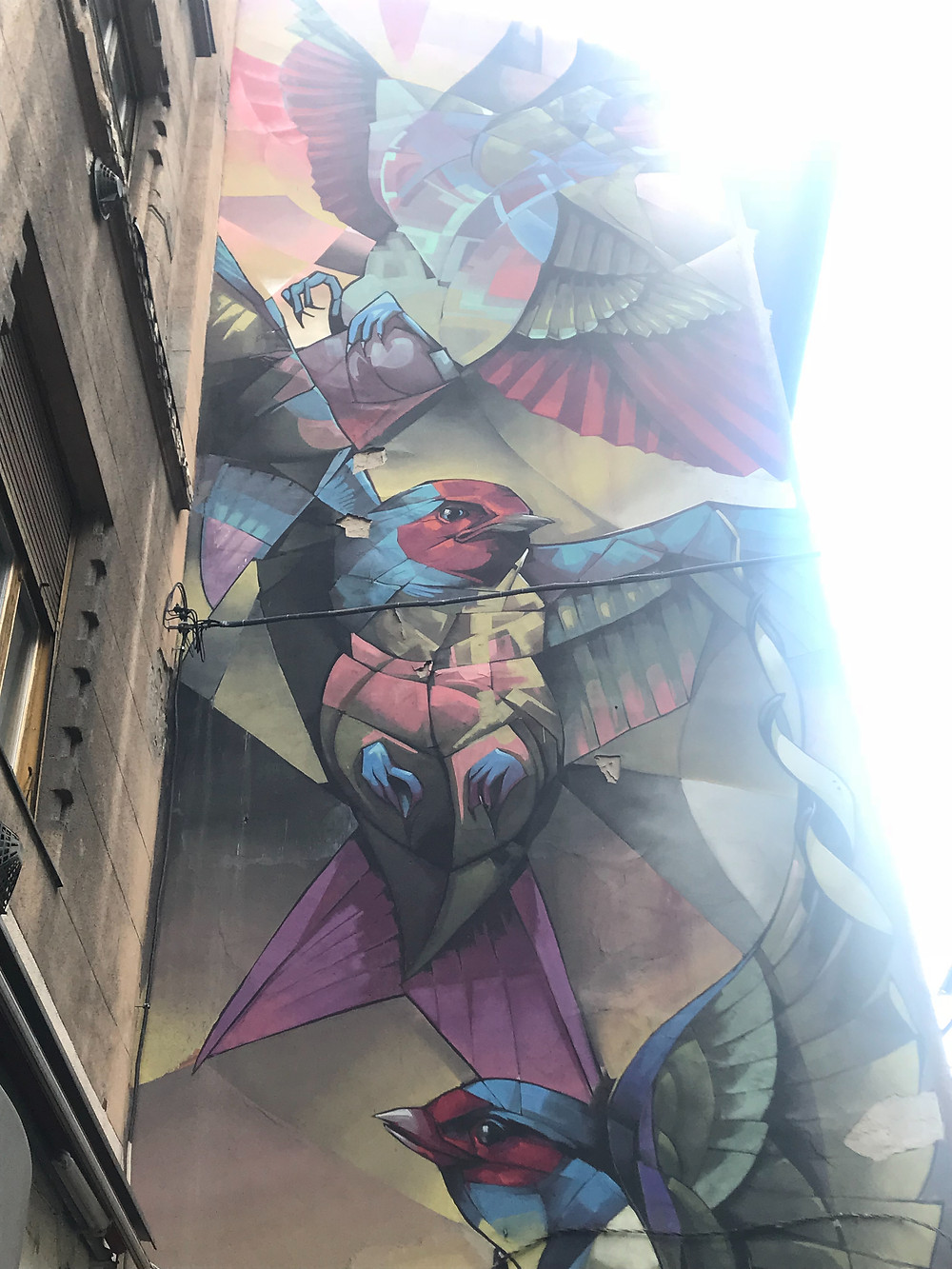 "One of our favourite Mural Paintings in Budapest:Swallows ""Calmness, or rampage"" 