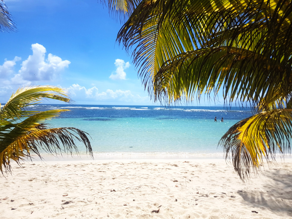 French Antilles in the Caribbean - a Destination to Travel in 2019!