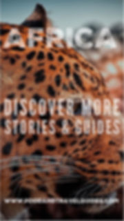 Discover more Stories and Guides Online at Food and Travel Guides!