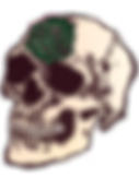 Skull and Rose.png