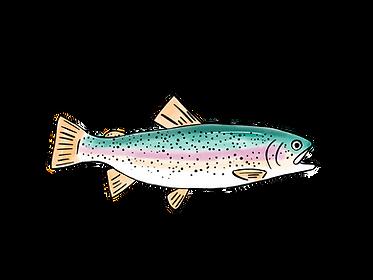 Fishing Testimonial.png