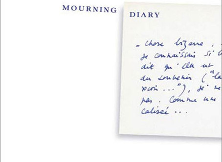 MOURNING DIARY BOOK REVIEW