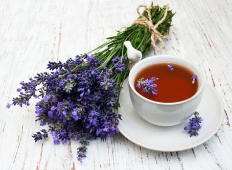 Infusión de Lavanda, planta medicinal de propiedades calmantes.