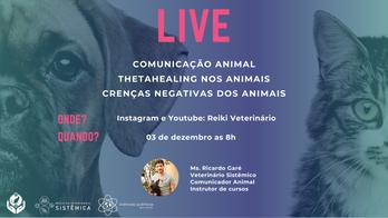 Live sobre Comunicação Animal e ThetaHealing nos animais