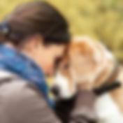 comunicação animal 2.jpg