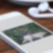 Captura_de_Tela_2018-07-28_às_12.19.26_e