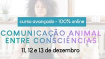 Curso Avançado de Comunicação Animal entre Consciências online - dezembro