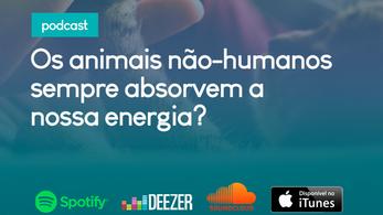 Podcast: Os animais não-humanos sempre absorvem a nossa energia?