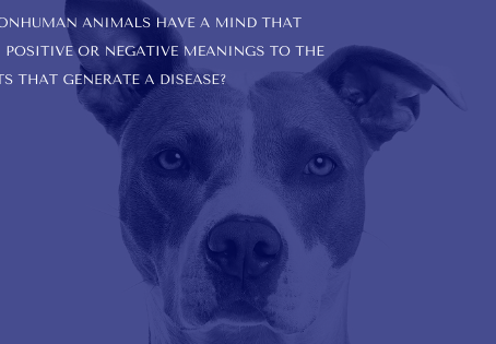 Do nonhuman animals have a mind that generate diseases?