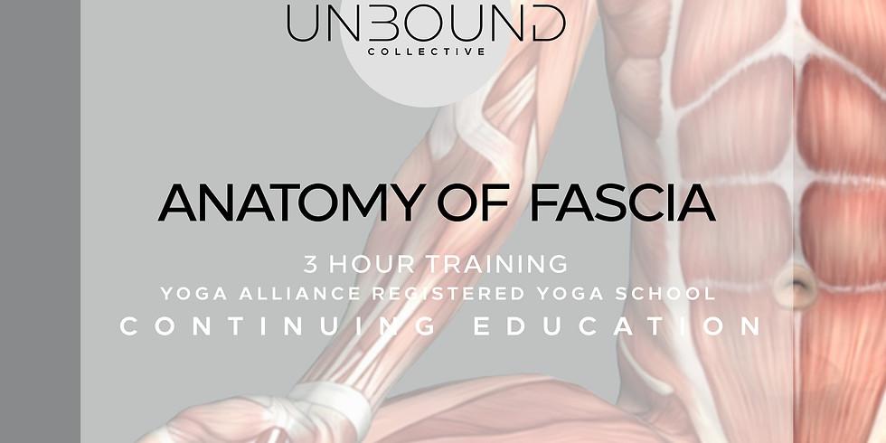 Anatomy of Fascia