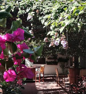 JARDINES En Hotel en Valledupar Casa de