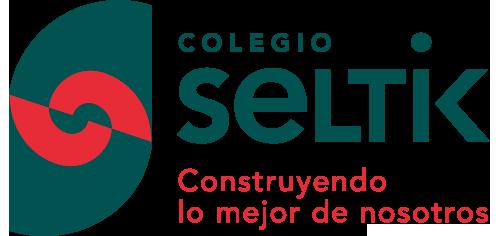 seltik_logo.png