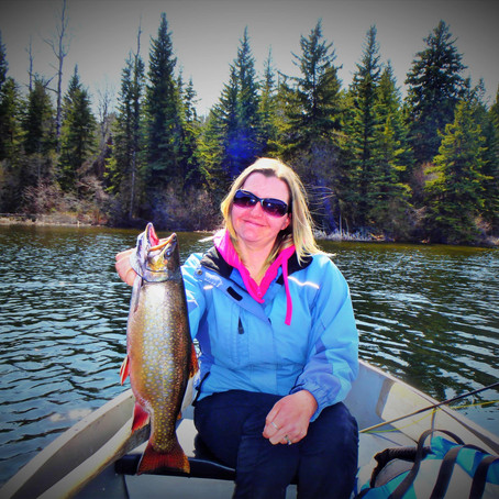 Targeting Stillwater Brook Trout on the Fly