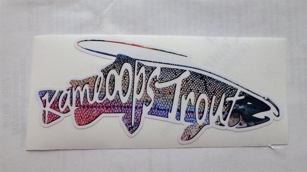 "KTC Rainbow Trout Skin Stickers Decals -  7"" x 3"""