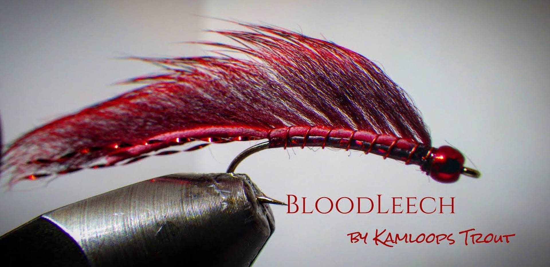 Blood Leech