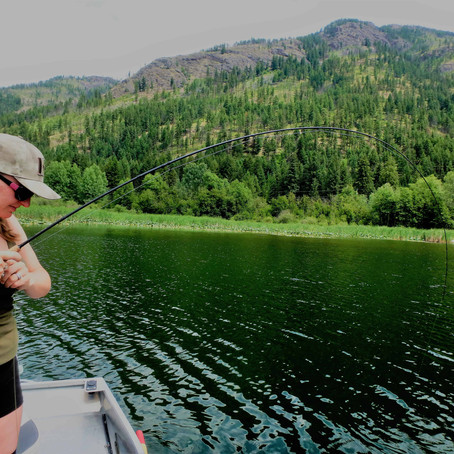 The Ugly Truth: Summer Time Trout Fishing & Catch and Release Mortality Rates