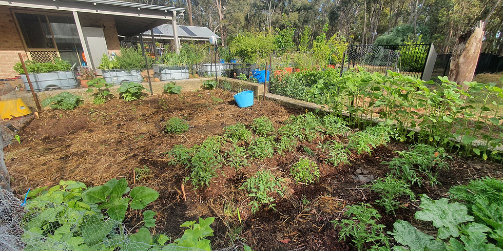 City of Swan Thinking Green Series - Introduction to Permaculture - Free Workshop (1)