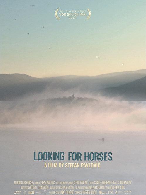 LOOKING FOR HORSES by Stefan Pavlović