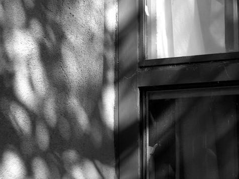 Shadow Door 1