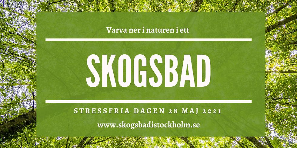 Stora skuggan - Avsluta den Stressfria dagen med skogsbad och After Woods