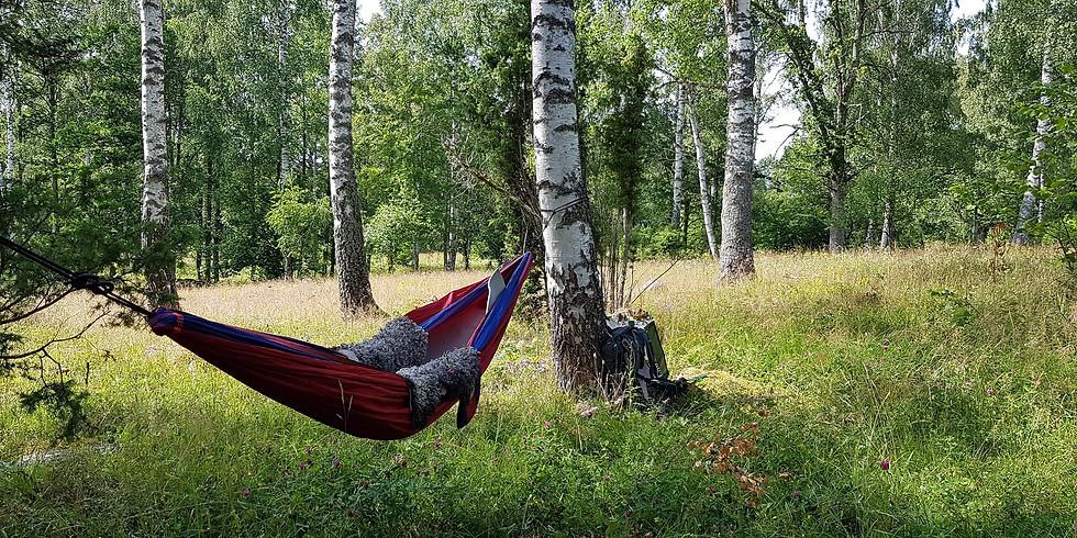 Västerås, Ängsö: Skogsbad Qigong & Hängmattehäng inkl sopplunch