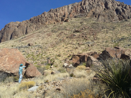On the trail w/ Scouting Destinations