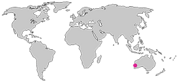World-Map-PNG-Transparent-Image(1).png