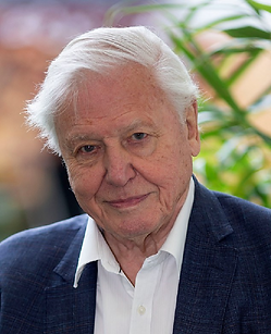 davis-attenborough.png
