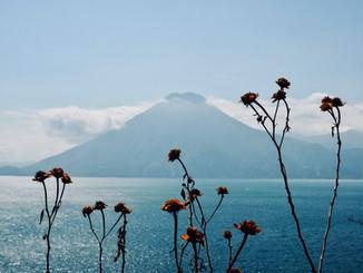 WE LOVE Guate
