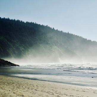 West Coast: LONG TIME NO SEA