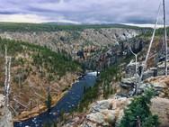 Wild Wyoming