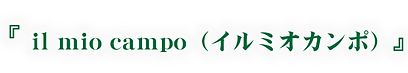 ロゴ_イルミオカンポ.png