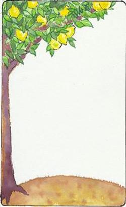 drawing2