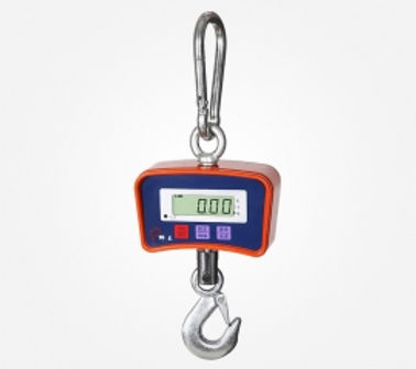 Q-Weigh OCS 500kg and 1 ton Crane scale.