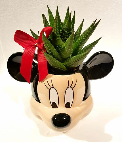 Disney Mickey Mouse Mug Succulent Arrangement