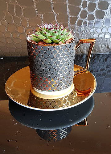Succulent In Soho Espresso Cup & Saucer 1