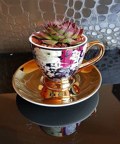 Succulent In Floral Espresso Cup & Saucer 1