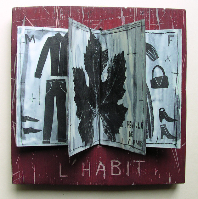 L'habit ( 23 x23 cm )