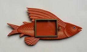 Cadre vitrine poisson volant