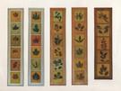 5 herbiers